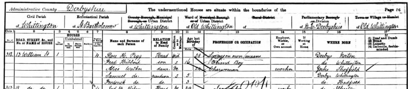 condensed1901 census