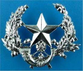 lilliman cap badge