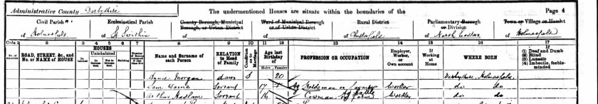 condesned1901census
